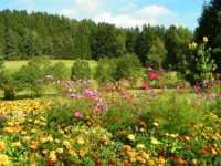 Urlaub im Bayerischen Wald im BayerischenWald