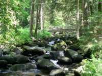 waldkirchen-sehenswertes-ausflugsziele-wandergebiet-wandern-saussbachklamm-wanderweg-150