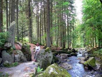 Wandergebiet und Ausflugsziel Saussbachklamm vor den Toren der Stadt Waldkirchen