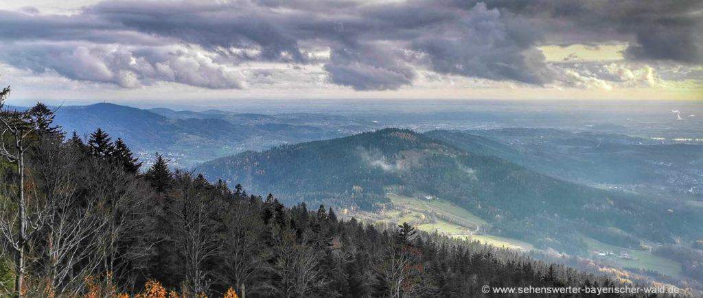 Rundweg am Vogelsang Regensburger Stein Aussichtspunkt