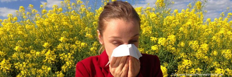 allergikergeeignete-ferienwohnungen-bayerischer-wald-allergiker-unterkunft-in-bayern