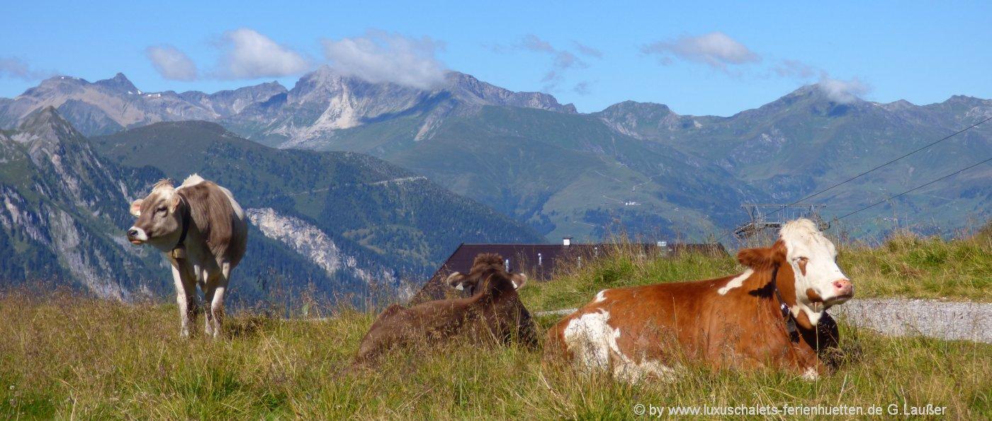 almhuetten-bayern-berghuetten-deutschland-berge-alpenlandschaft-1400