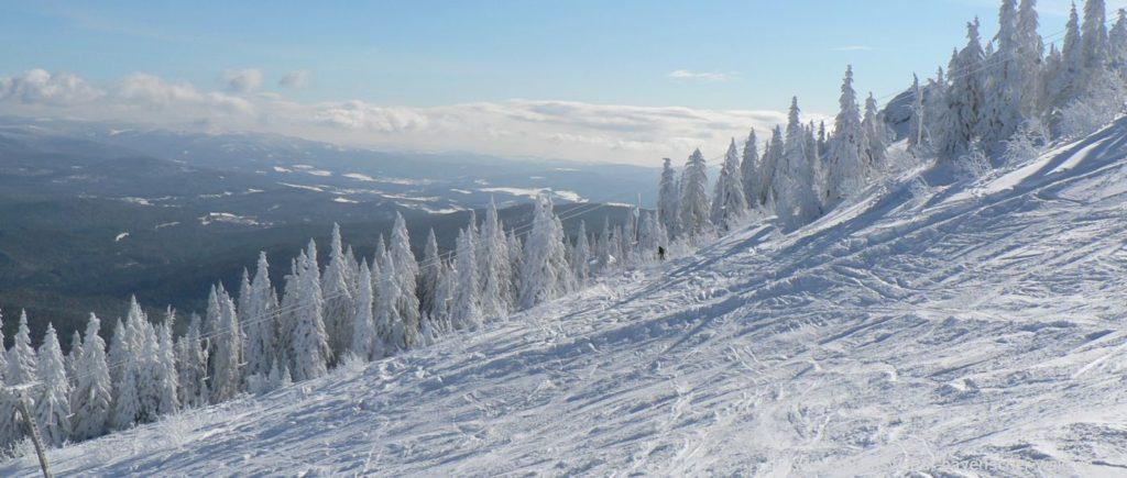 arber-skigebiet-bayerischer-wald-skifahren-landschaft