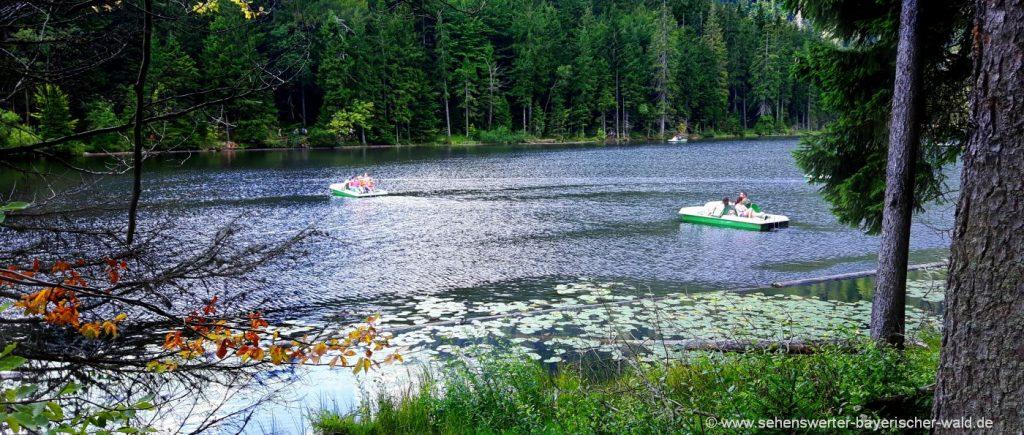 Aktivitäten Bayerischer Wald Boot mieten in Bayern