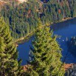 Freizeitangebote Bayerischer Wald großer Abersee Wanderung