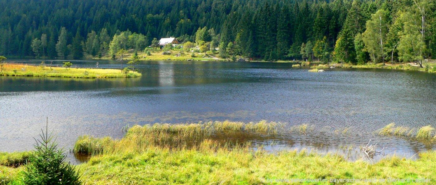 arbersee-kleiner-rundwanderweg-schwimmende-inseln-ausflugsziele-gaststätte