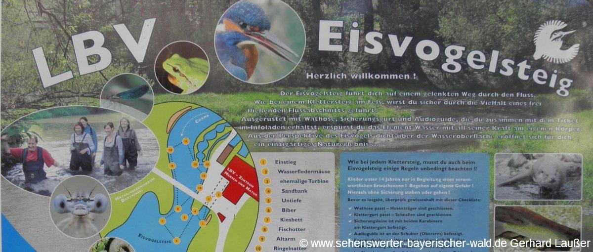 arnschwang-lbv-eisvogelsteig-schautafel-zentrum-mensch-natur-panorama-120