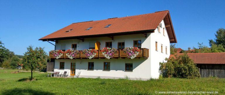 aubauernhof-ferienwohnungen-cham-oberpfalz-uebernachten-hausansicht