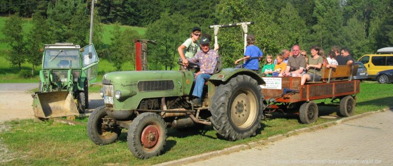bauernhofurlaub-bayerischer-wald-erlebnisbauernhof-traktor-fahren