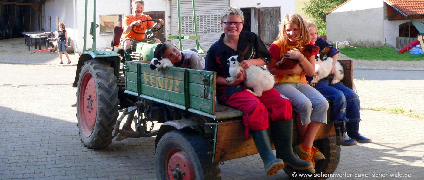 bauernhofurlaub-bayerischer-wald-erlebnisbauernhof-traktor-mitfahren