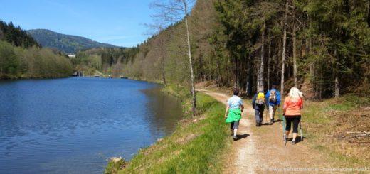 bayerisch-kanada-flusswanderung-gumpenried-teisnach