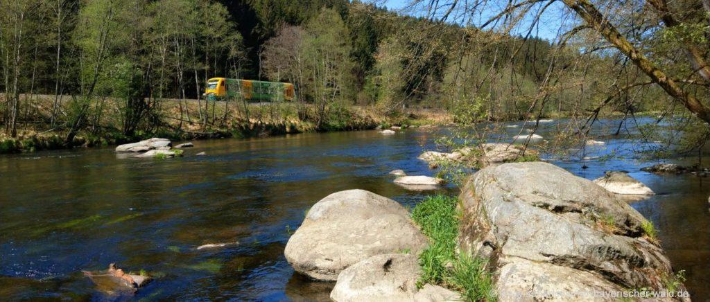 Viechtach Flusswanderweg Bayerisch Kanada Zug Fahrt mit der Waldbahn