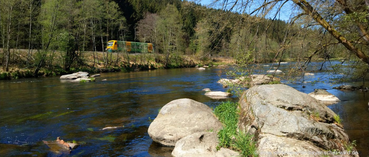 Fluß Wwanderweg Bayerisch Kanada Zug Fahrt mit der Waldbahn