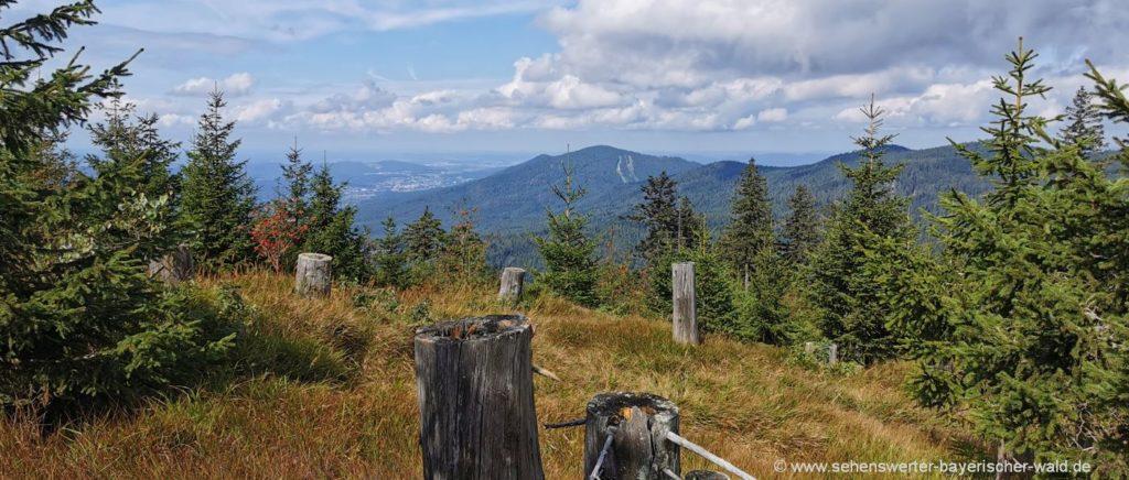 bayerischer-wald-8-tausender-kammwanderung-berg-gipfel