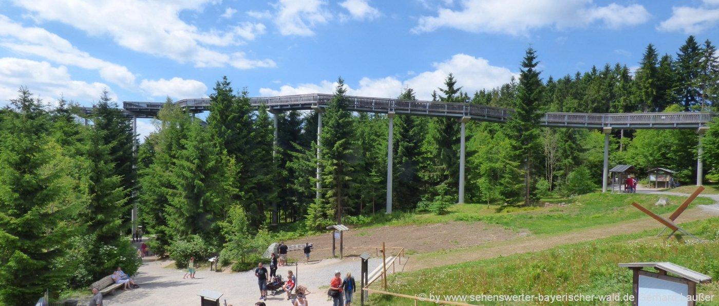 bayerischer-wald-imposante-bauwerke-waldwipfelweg-niederbayern-oberpfalz