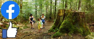 Bayerischer Wald Insider Tipps