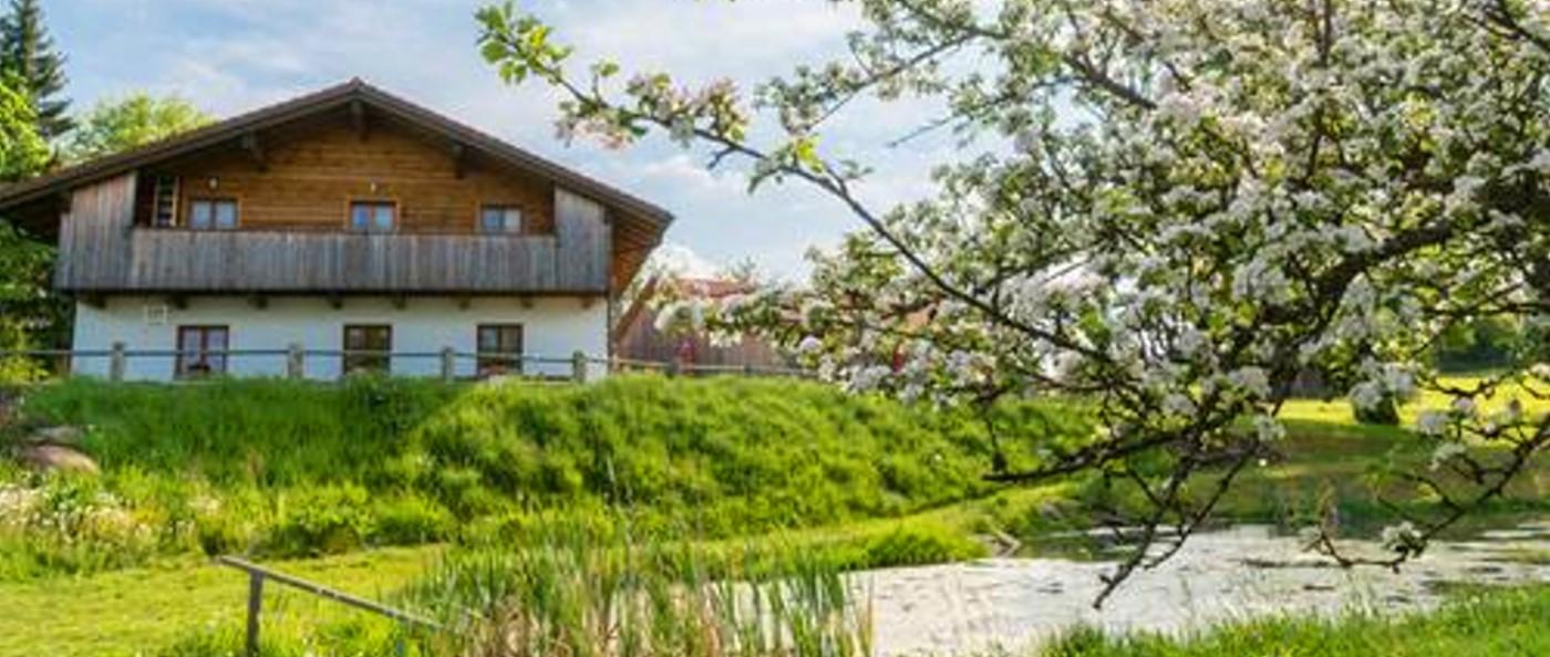 Bayerischer Wald TCM Urlaub in Bayern Seminar TCM Ernährung