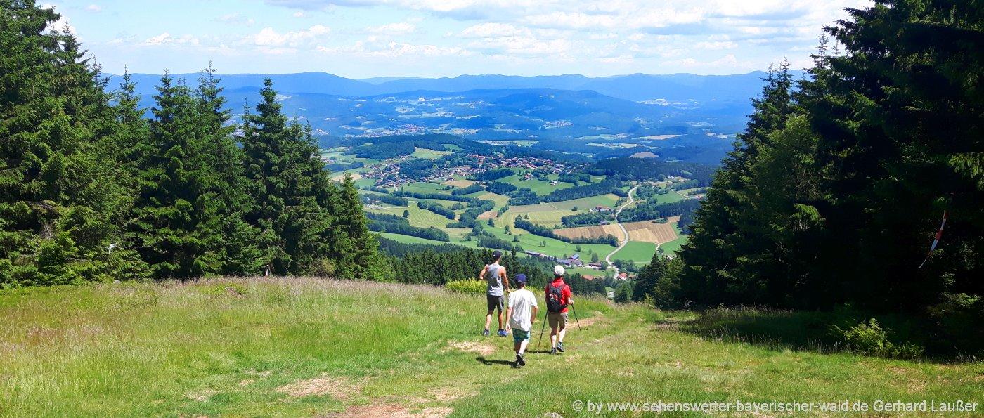 bergwandern-bayerischer-wald-berge-aussichtspunkte