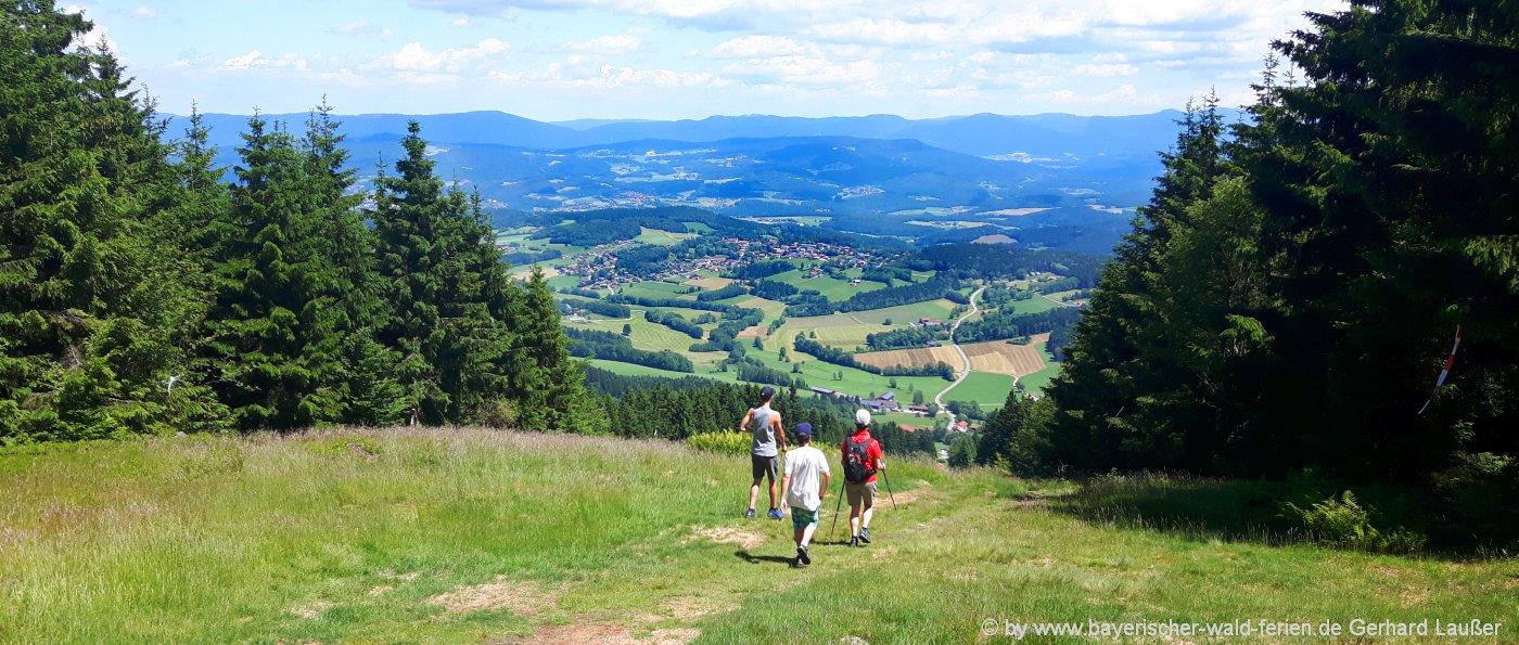 Wanderwege von 8 bis 10 km im Bayerischen Wald - mittlere Wanderung zum Pröller Gipfel