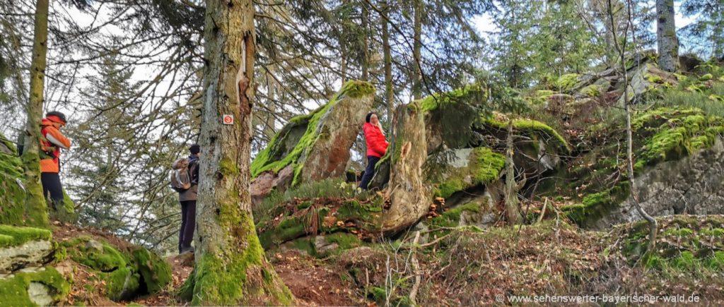 Klettersteig zum Burgstein Gipfel bei Bernried Wanderung Ggipfelweg