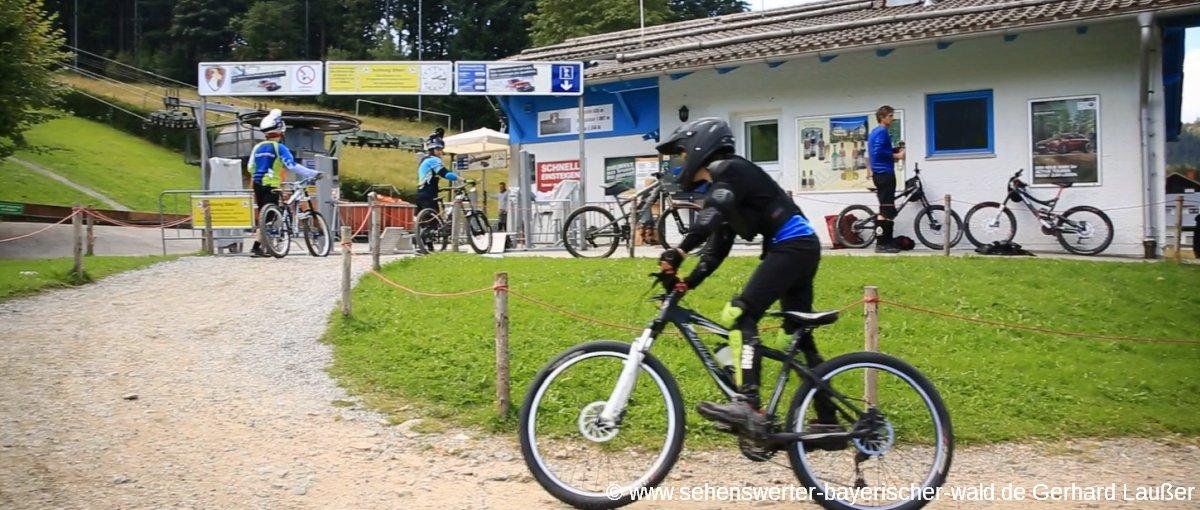 MTB Verleih Bayerischer Wald - Mountainbike günstig ausleihen