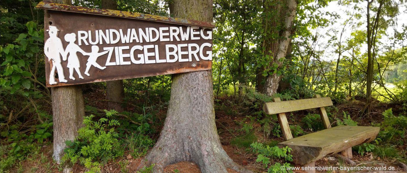 blaibach-rundwanderweg-ziegelberg-lehrpfad-cham