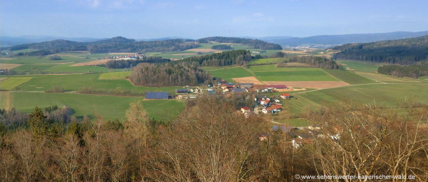 bleschenberg--waldmuenchen-oberpfalz-landschaft