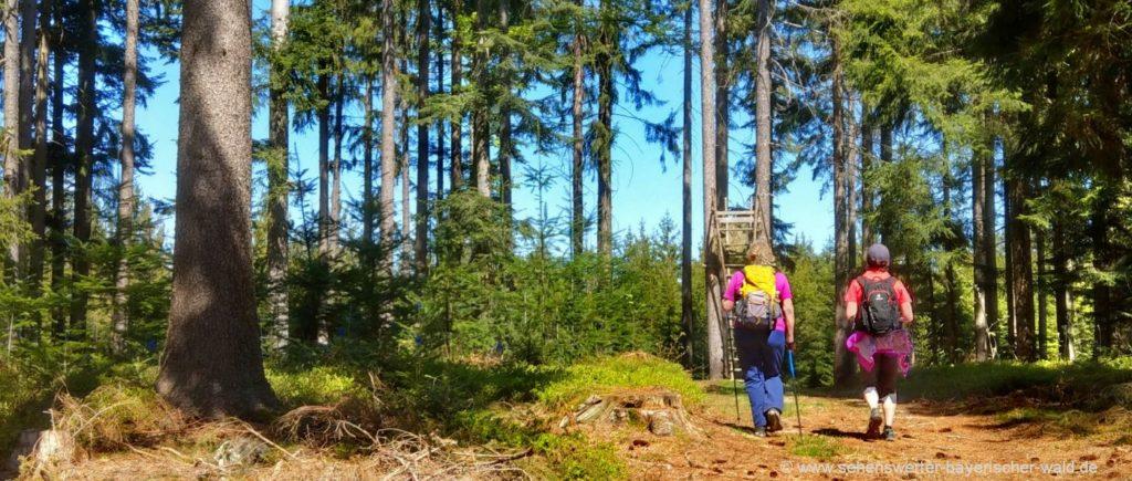 Wanderweg Böbrach Frath als Rundweg oder direkt über Frather Weg