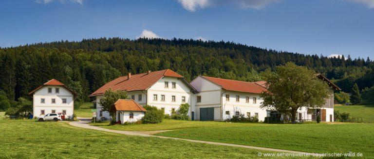 breinhof familien-kinder-wellness-bauernhof-niederbayern