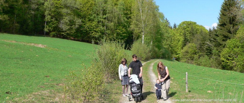 Schaukelweg in Breitenberg Familien Wanderweg im Bayerischen Wald