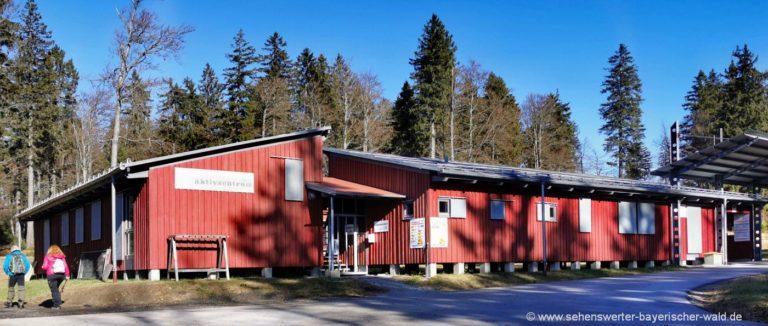 bretterschachten-aktivzentrum-bayerischer-wald-wanderparkplatz-ausgangspunkt