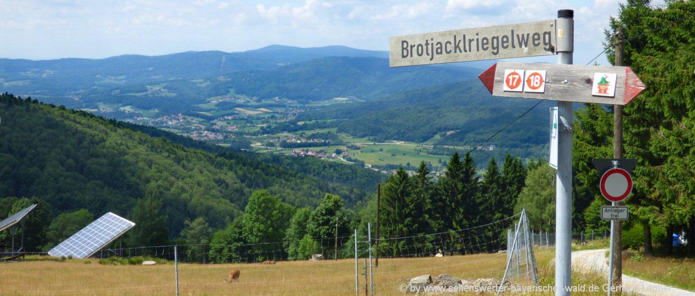 brotjacklriegel-wanderweg-berg-sonnenwald-wanderung-aussicht
