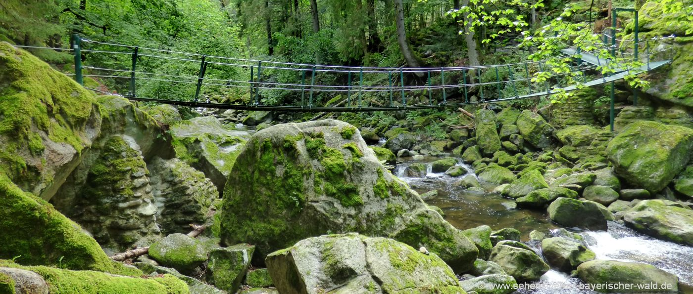 buchberger-leite-haengebrücke-ringelai-wanderweg