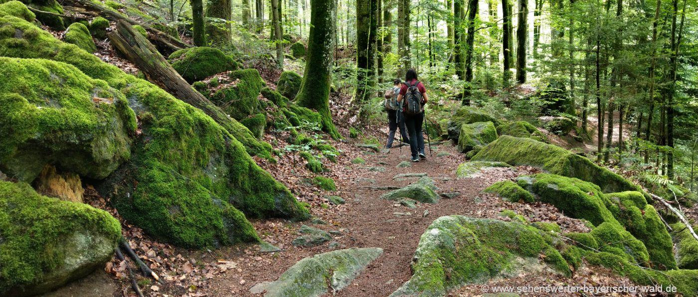 buchberger-leite-wanderweg-bayerischer-wald-ringelai