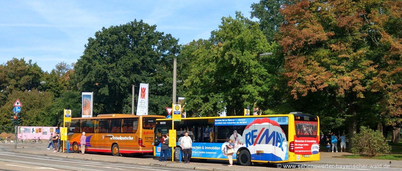 busreisen-bayerischer-wald-reisebusse-bayern-gruppenreisen