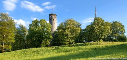 cham-luitpoldturm-aussichtsturm-luitpoldhoehe-ausflugsziel-panorama