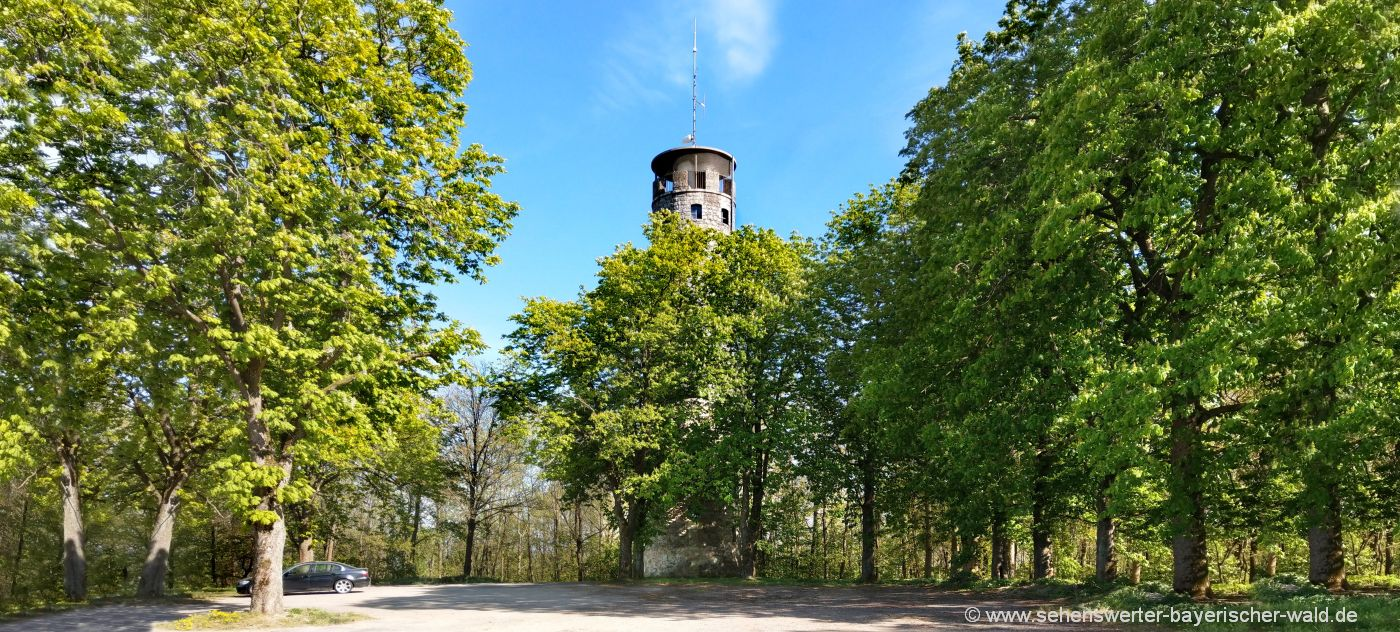 Aussichtsturm Cham Wanderung zum Luitpoldturm Luitpoldhöhe
