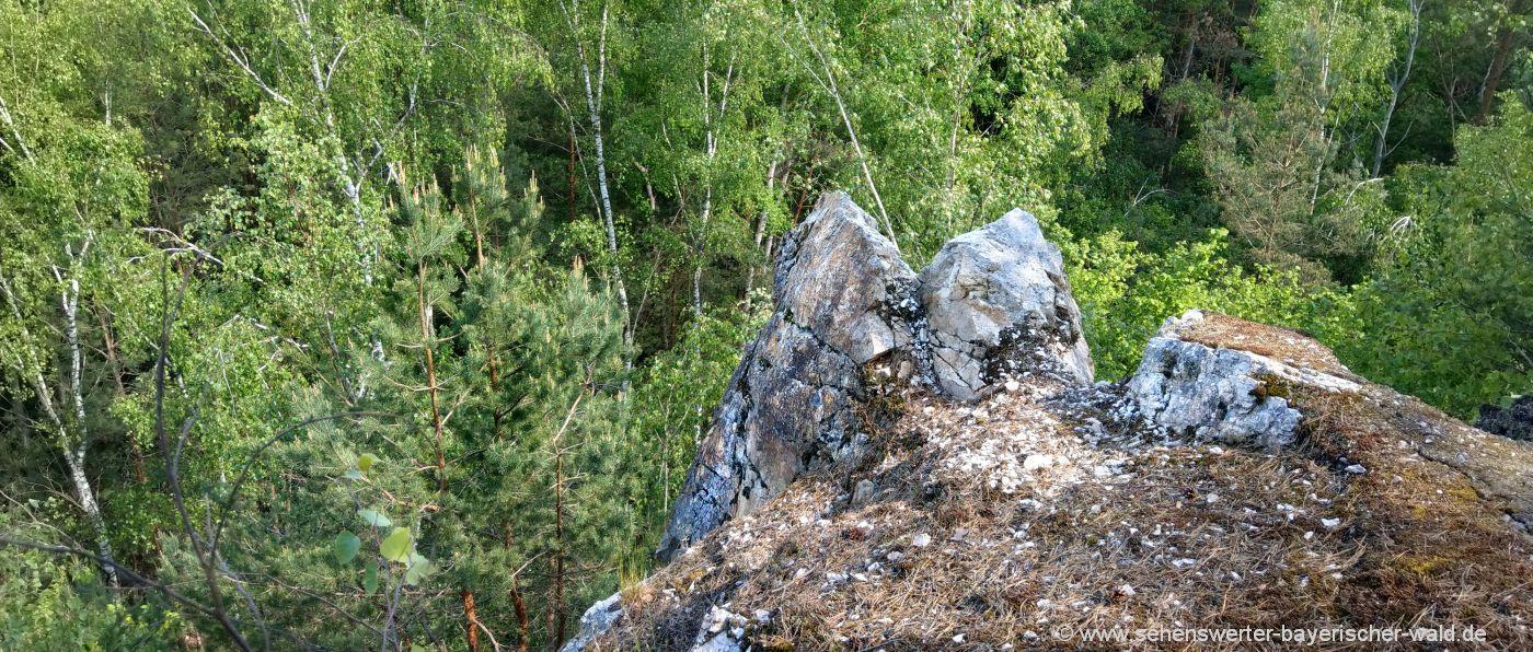 Teufelsmauer Bayerischer Wald der Pfahlrücken Quarzfelsen
