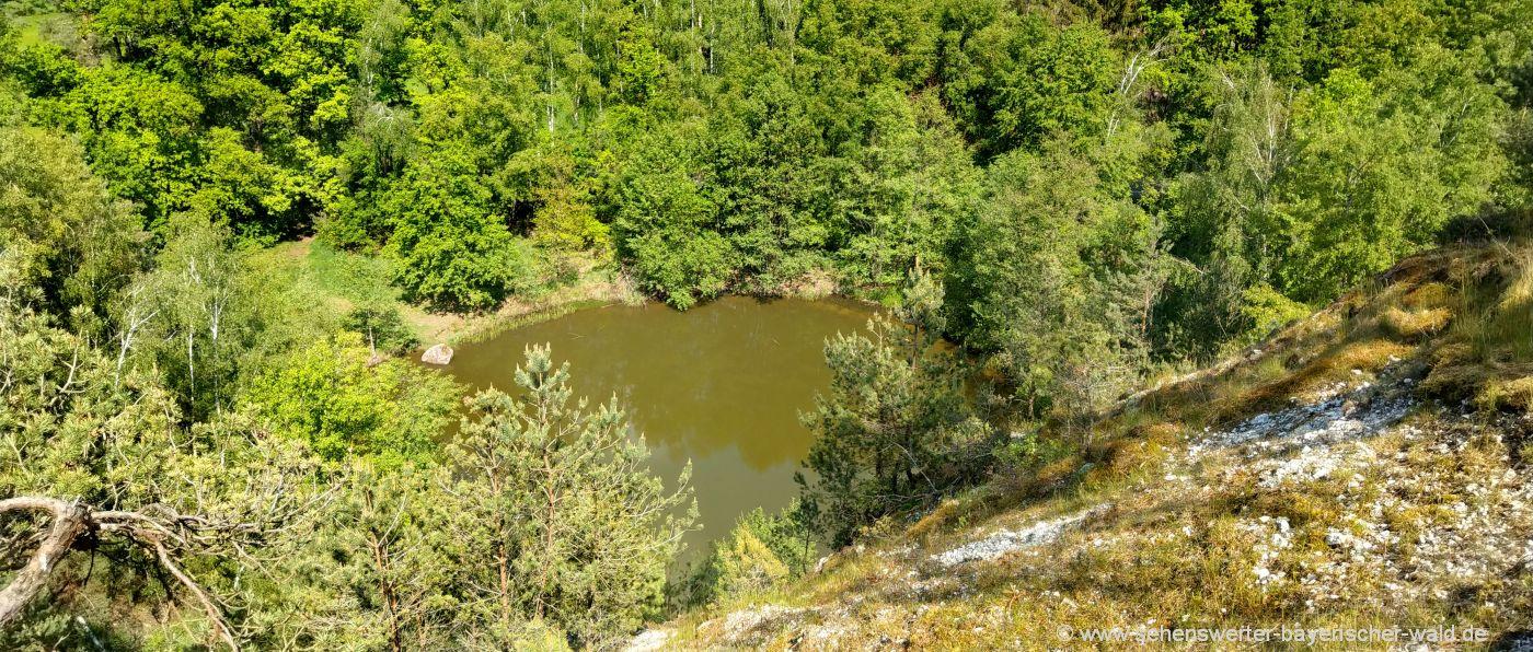 Cham Pfahlsee Wanderweg über die Teufelsmauer Bayerischer Wald