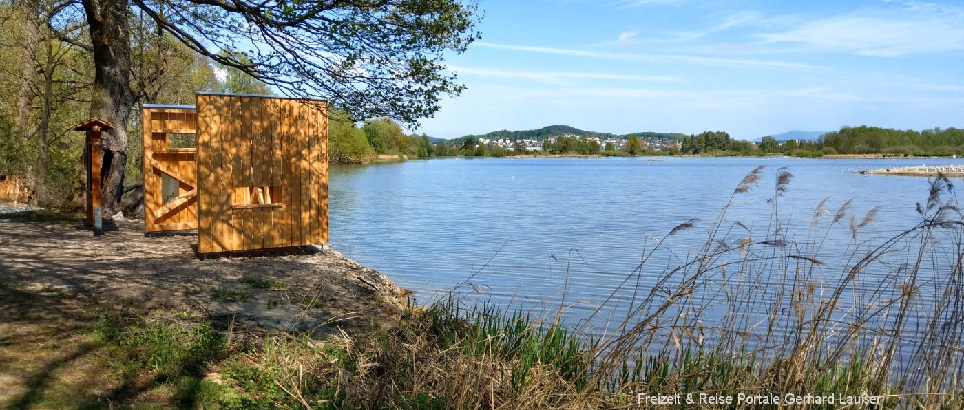 Naturbeobachtung am Rötelseeweiher Vogelbeobachtung bei Cham