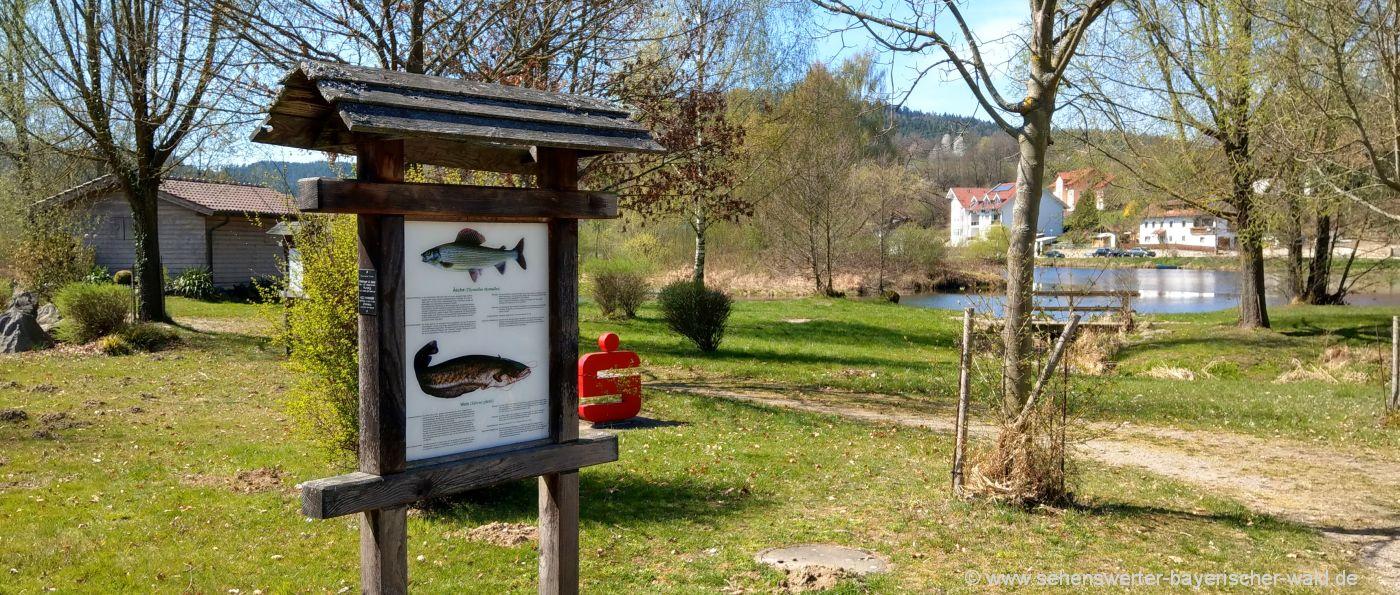 chamerau-freizeitangebote-oberpfalz-abenteuerspielplatz-regen-fluss