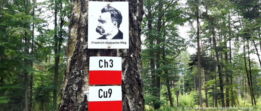 Chammünster Friedrich-Nietzsche-Wanderweg zum Lamberg Bayerischer Wald