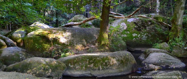 doost-naturschutzgebiet-rundwanderweg-felsen-neustadt-waldnaab