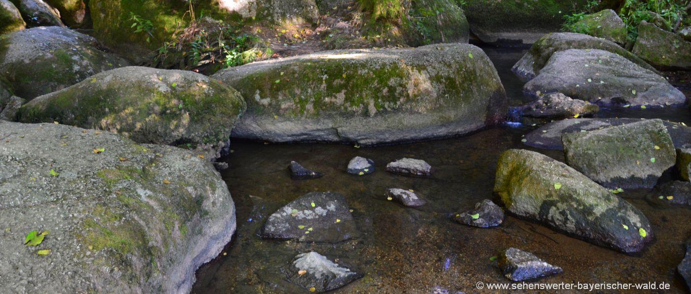 doost-naturschutzgebiet-rundweg-neustadt-waldnaab-wandern-bach