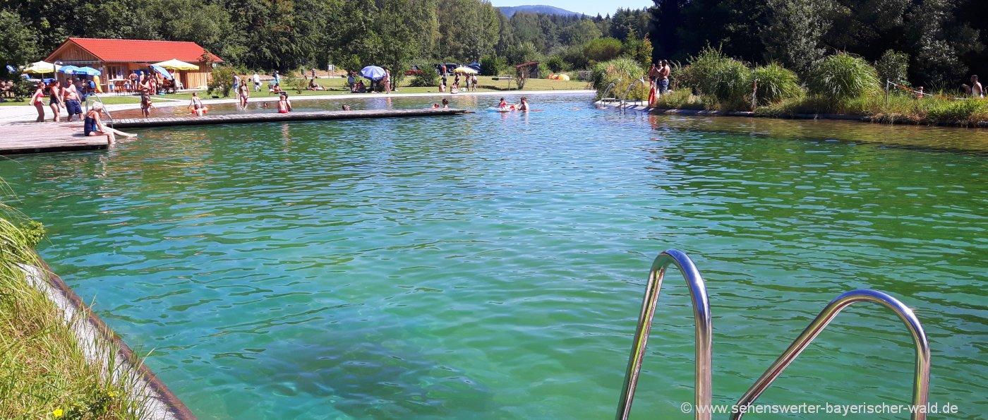 drachselsried-naturbad-landkreis-regen-naturbadesee