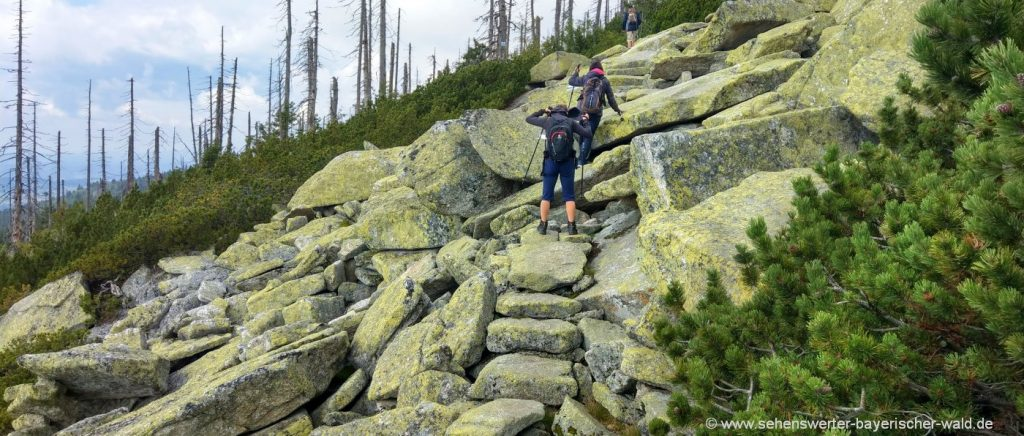 dreisessel-rundweg-wandern-steinernes-meer-felsen-brocken