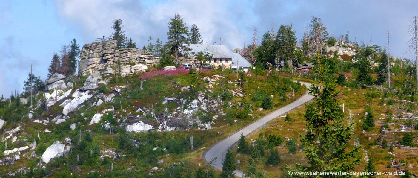 dreisessel-wanderung-gipfel-berghütte-wandern-berggasthof