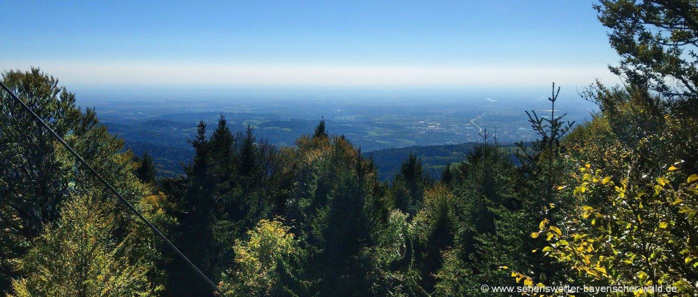 dreitannenriegel-wanderung-berggipfel-aussichtspunkt-niederbayern