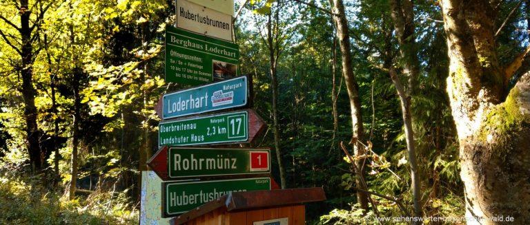 dreitannenriegel-wanderwege-berghaus-loderhart-wanderung