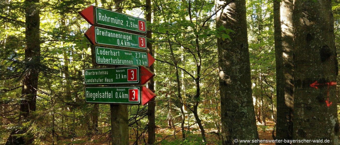 Wandertour Dreitannenriegel bei Deggendorf DAV Hütte mieten